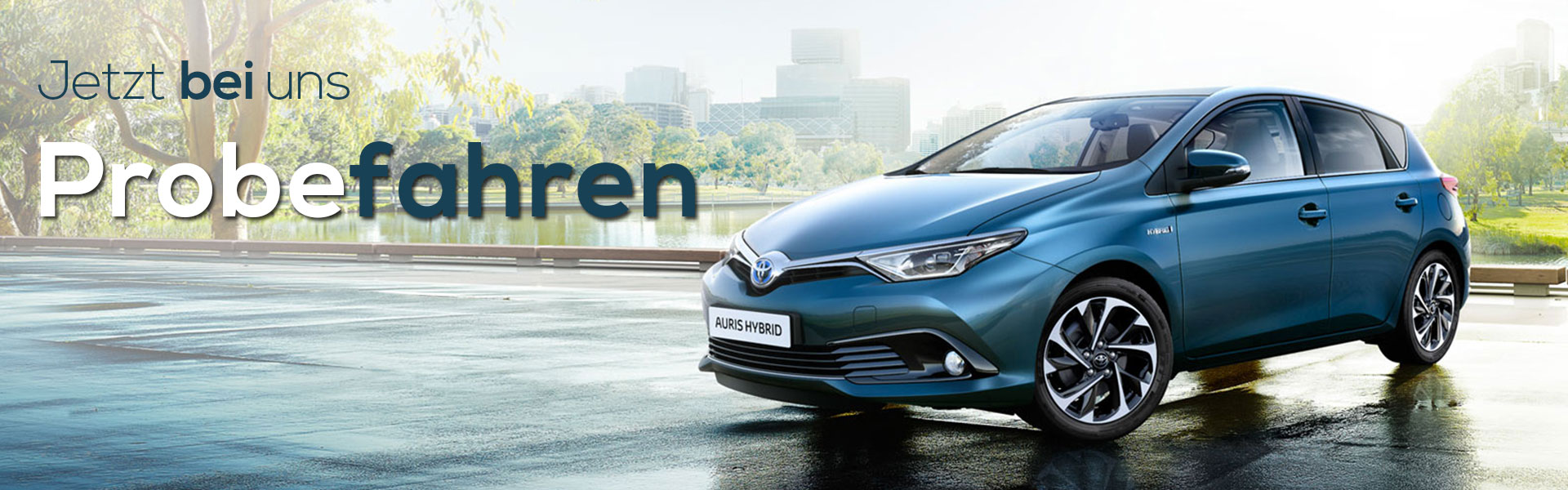 auris-new-slider